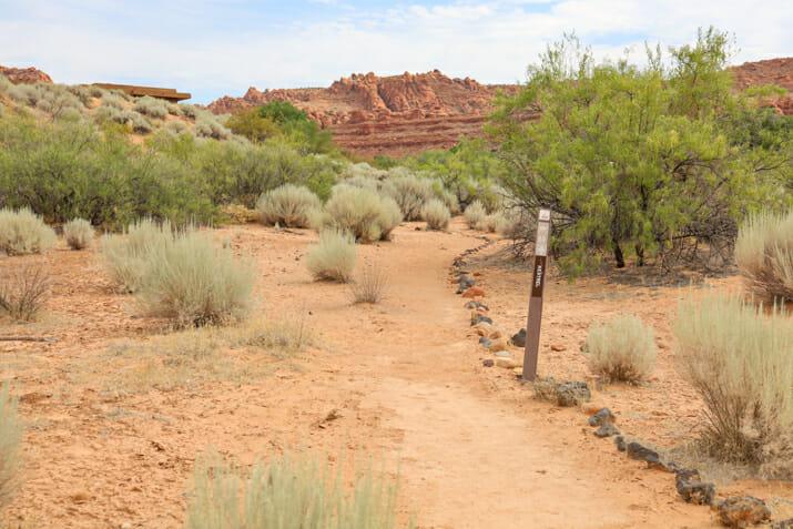 Kestrel Trail